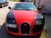 bugatti-veyron-replica-lithuanian-6
